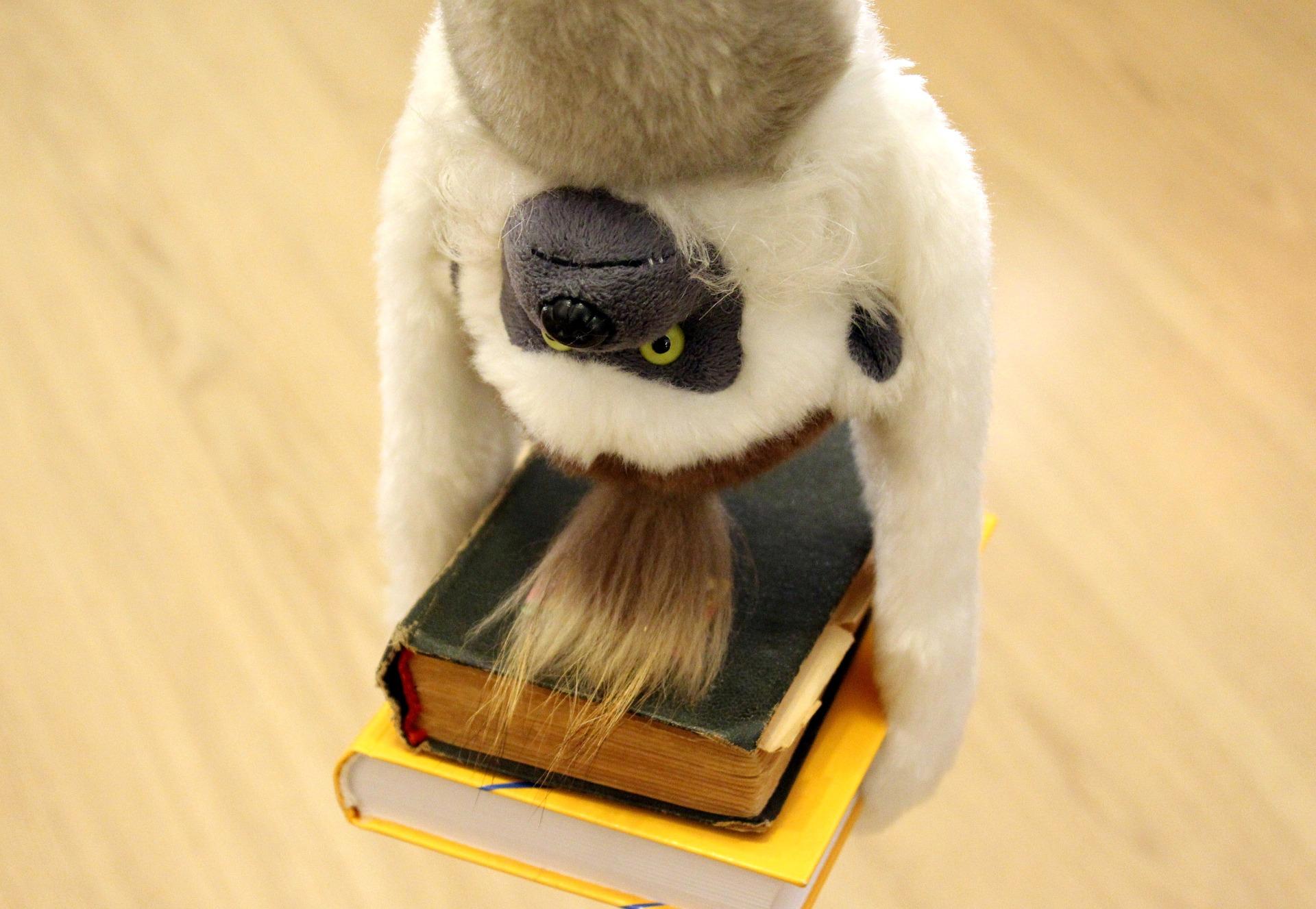 11 2018 monkey & books